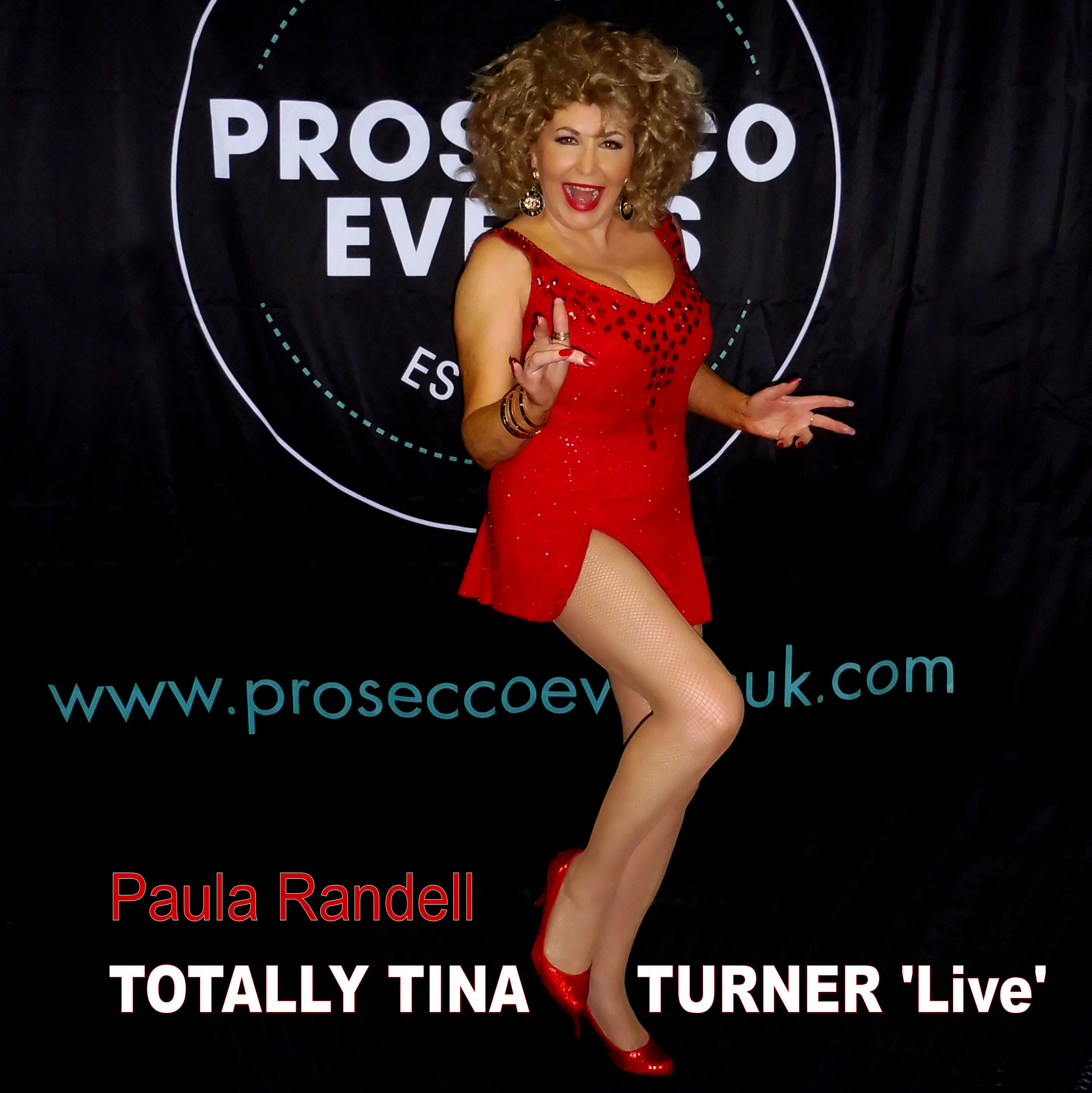 Tina Turner Tribute On Prosecco Tour