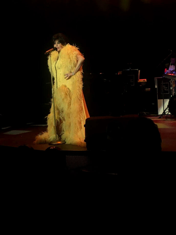 Shirley Bassey International Tribute