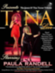 Totally Tina Turner Live Paula Randell Advertising Poster. Considered the closest Vocal Impersonator of Tina Turner. Exact Replica Costumes