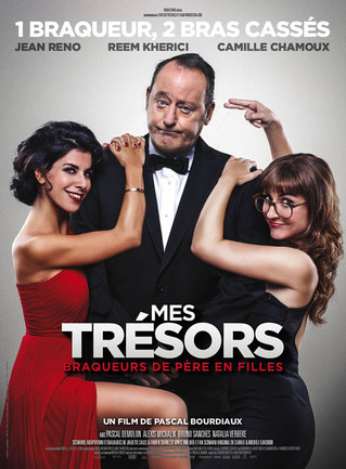 En salle aujourd'hui: Mes Trésors, un film de Pascal Bourdiaux