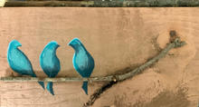 Bluebirds x 3