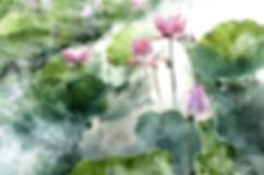 flower-2542231_640.jpg