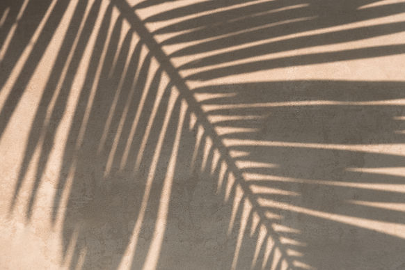 Lymphatic Drainage in Scottsdale, AZ | CURV Body Lounge