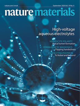 NMat_cover_Sep20.indd_print.jpg