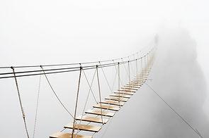 Fuzzy man walking on hanging bridge vani