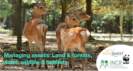 Assets2-land and wildlife webinar.jpg