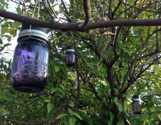 Quick and Pretty Tree Solar Lanterns