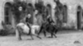 spectacle equestre au haras d'Hennebont