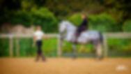 dressage cheval cours equitation