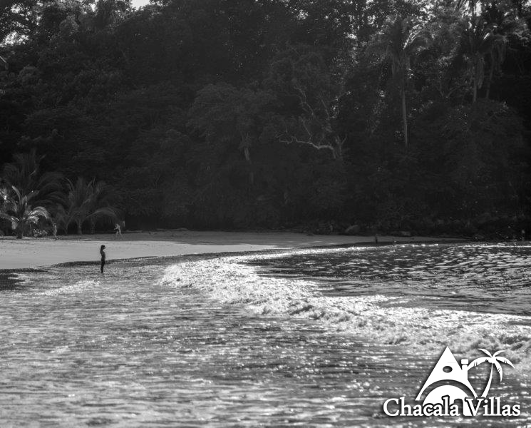 Chacala_2015_fotos_-76