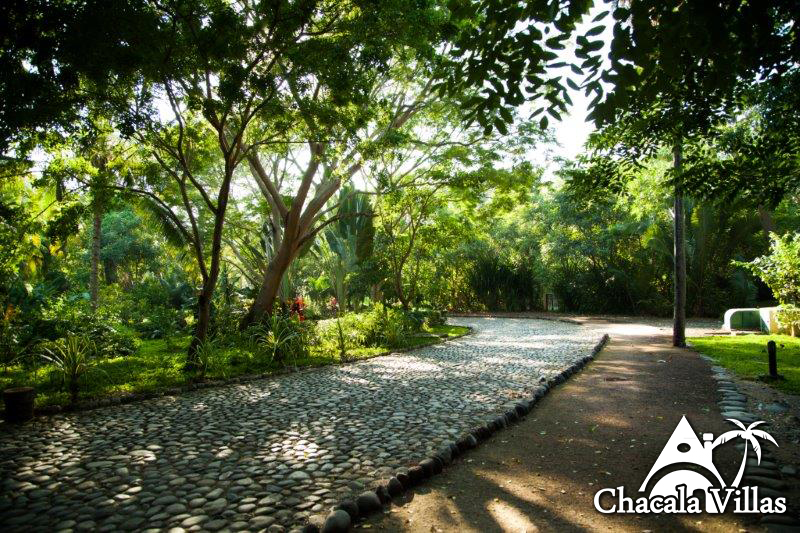 Chacala_2015_fotos_-126