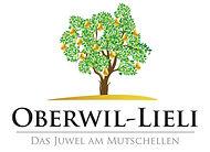 Oberwil_png_edited.jpg