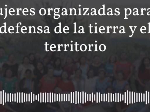 Podcast: Mujeres organizadas para la defensa de la tierra y el territorio
