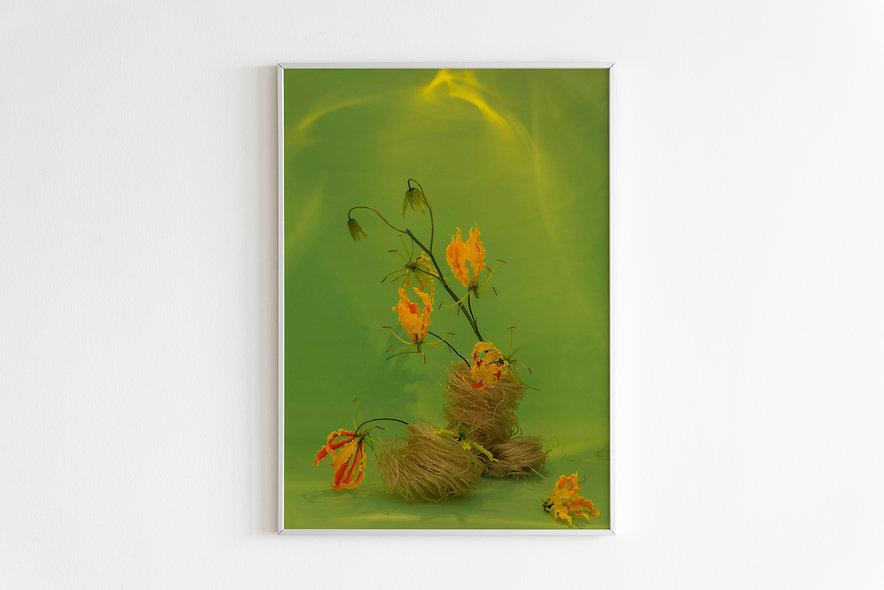 Fine art print  / Japanese Garden #1