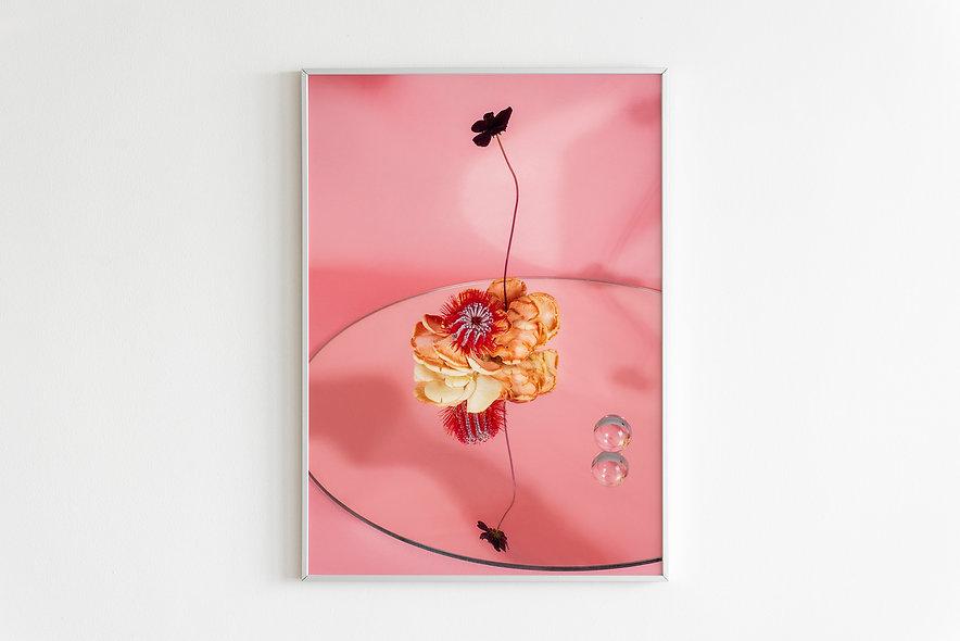 Fine art print / Japanese Garden #10