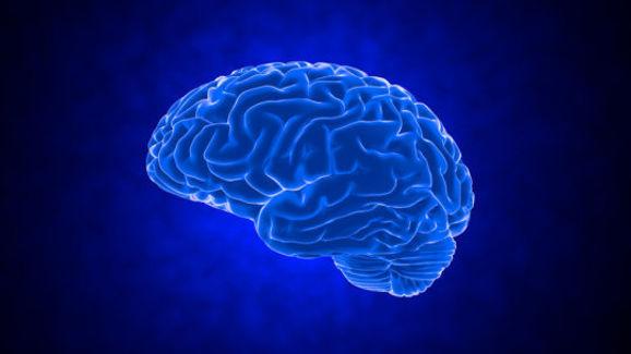 blu brain.jpg