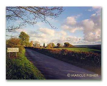 Buckland-in-the-Moor