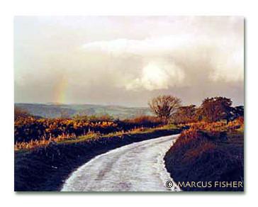Road in Dartmoor
