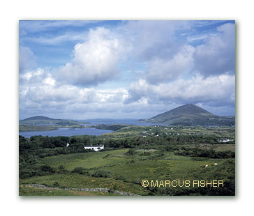 View of BallynakillLarge.jpg