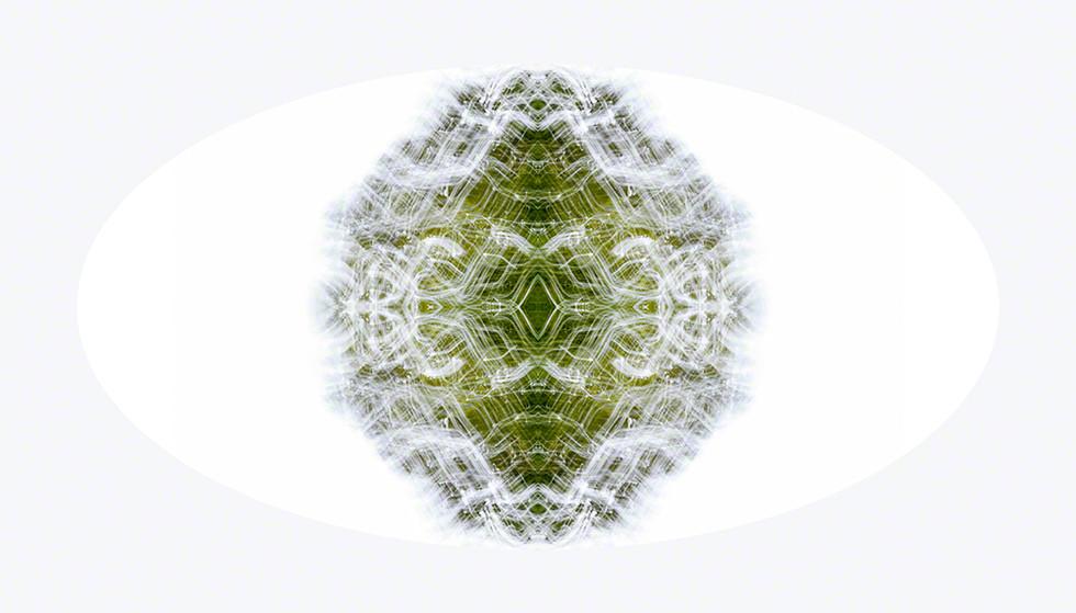 Photon Mindscape