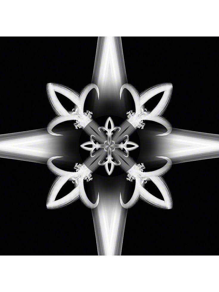 Royal Star 3