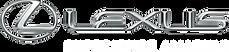Lexus_3D_Tag_White_HR_RGB.png_84495.png