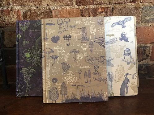 Art Inspired Science/Nature Journals