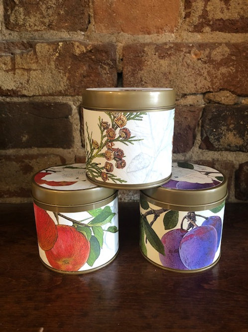 Rosy Rings Natural Wax Tins/3 scents