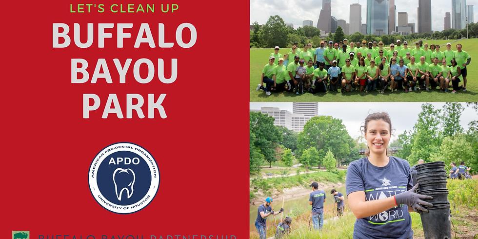 Buffalo Bayou Volunteer day