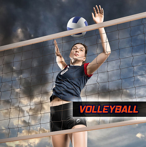 VOLLEYBALL BANNER F.jpg
