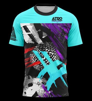 ATCSS12