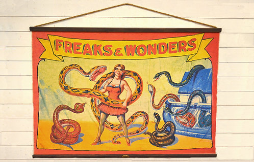 Freaks and Wonders Canvas Wall Chart (3853)