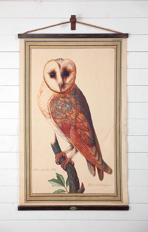 Barn Owl Canvas Wall Chart (1732)