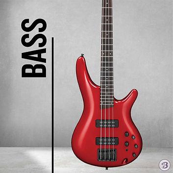 Web Banner bass-04 - shelbie tan.jpg