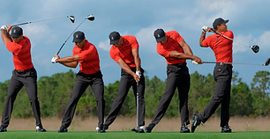 Tiger-Woods-swing-sequence-tout.jpg.webp