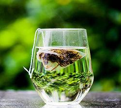 Thé vietnamien parfumé, Thé parfumé du Vietnam, Thé du Vietnam, thé parfumé, Thé du Vietnam, Thé vietnamien