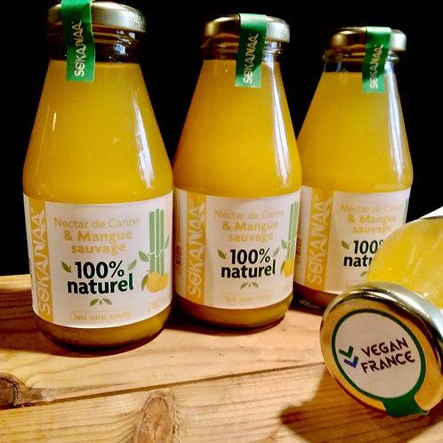 Nectar de canne à sucre et Mangue sauvage - 260 ml - Lot de 3 bouteilles