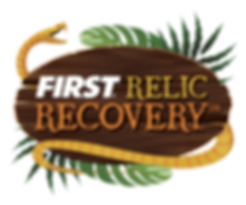 FIRST-FTC-RelicRecovery17-18-Color-840x7