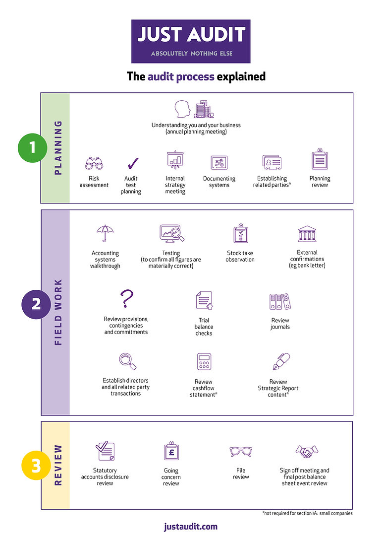 JA audit process infographic.jpg