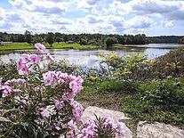 Maitland River pink flower_edited.jpg