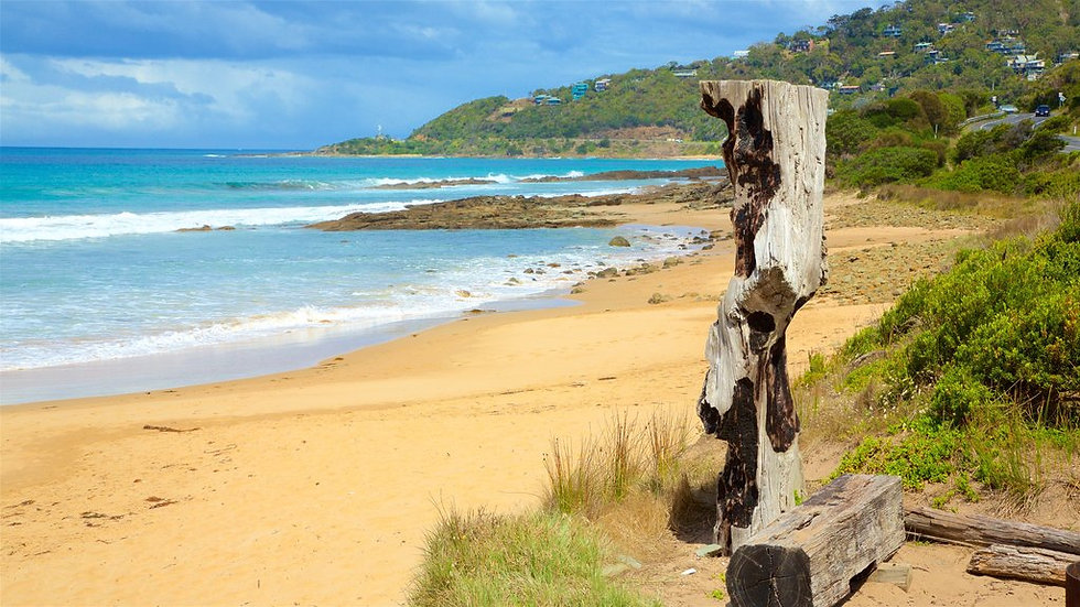 If you find yourself out of LPG in Wye River outside of our scheduled delivery day, feel free to call us on 8529-7210.