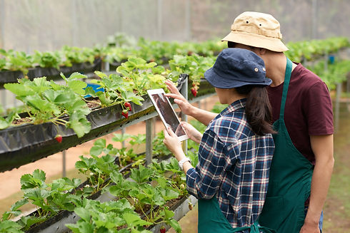medium-shot-agronomists-taking-picture-s