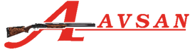 Avsan - Logo.png