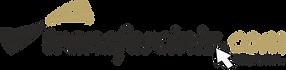 transferciniz-logo.png