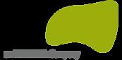 everis logo.png