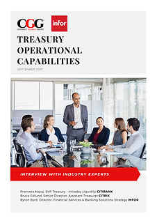 INTERVIEW Treasury Operational Capabilities.png