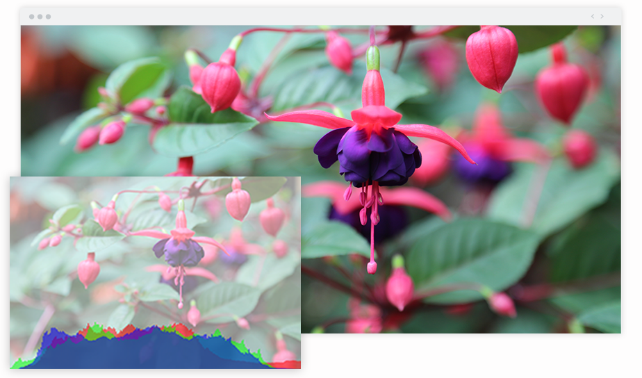 Best Chrome Extensions for Photographers Image Histogram