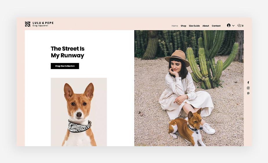 귀여운 강아지가 스카프를 두르고 페도라를 쓴 여성과 함께 평화롭게 앉아있는 모습