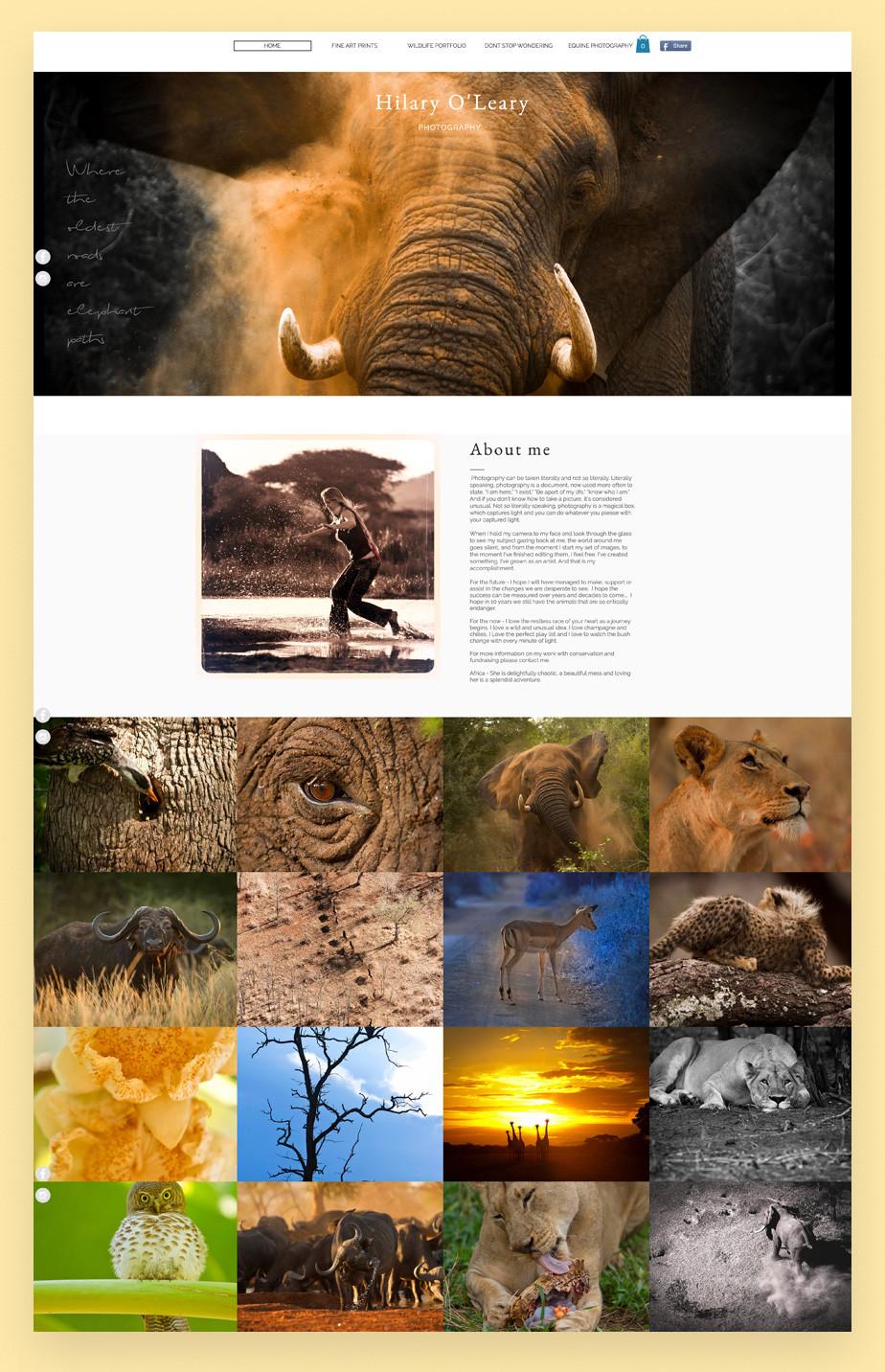 Screenshot do site de portfolio da fotógrafa de vida selvagem e natureza Hilary Oleary