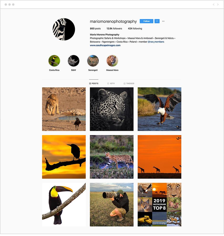 Feed de Instagram con fotos de safaris de la cuenta de Mario Moreno